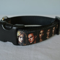 """The Vampire Diaries inspired Dog Collar - 1"""" Adjustable"""