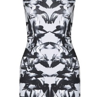 When Doves Cry Dress   Gray Bird Print Winged Bodycon Dresses   Rickety Rack