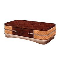 Iconic Style Modern Wooden Coffee Table