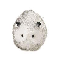 Snowball the White Guinea Pig Stuffed Animal Plush Toy