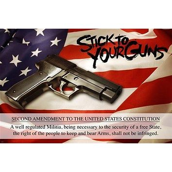 STICK TO YOUR GUNS political poster SECOND AMMENDMENT RIGHTS 24X36 bear ARMS