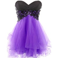 Medon's Sweetheart Tulle and Applique Short Prom Dress
