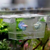 Transparent Fish Tank Aquarium Incubator Fish Breeding Hatching Boxes Multifunctional Acrylic Fish Breeding Isolation Box