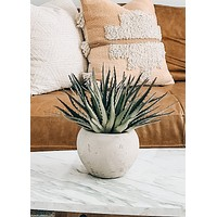 "Artificial Aloe Potted Succulent Plant - 11"" Tall"
