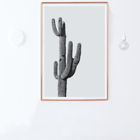 Large Cactus Photography- Printable Cactus Poster, Cactus Wall Art-Instant Download- large wall art-  24x36 poster, 24x36 print, 16x20, 8x10