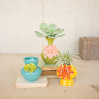 Set of 3 Colored Ceramic Vases with Flowers