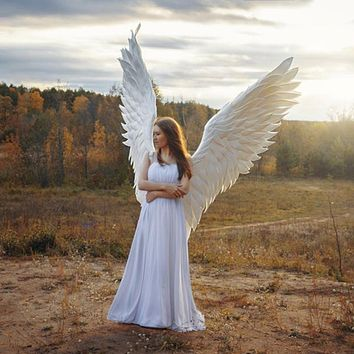 Black White Angel Wings