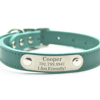 Leather Dog Collar With Personalized Nameplate - Jade