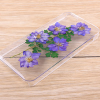 Consolida ajacis resin pressed flower iPhone Galaxy case 021