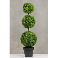 "39"" Teagrass 3 Balls Topiary in Pot"
