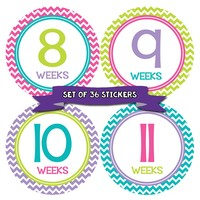 Weekly Pregnancy Deluxe Set of 36 Stickers