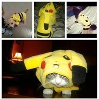 Cute Cartoon Pikachu Design Pets Costume Dog Clothing For Cats Dogs Clothes  [8098018183]