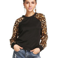 Leopard Embroidered Long Sleeve Sweatshirt