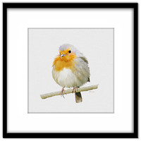 Robin Instant Download, Printable Bird Poster, Bird Painting, Print Your Own Cards and Wall Art