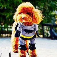 Batman Costume Outfit Cotton Pet Dog Clothes Jumpsuit Pants Dree Up 4 Sizes