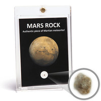 Holy Crap You Guys It's a Rock From Mars!