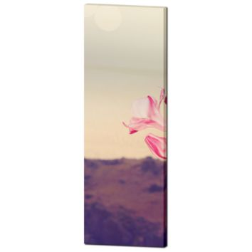 Tall Canvas - Greek Landscape - Pink and Brown - Pink Flower Canvas - Pink Flower Photo - Home Decor - Large Canvas - 20 x 60 Canvas