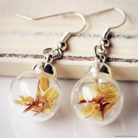 Nature Inspired Jewelry Real Dried Clover Earrings Gift (HM0038-SLIVER)