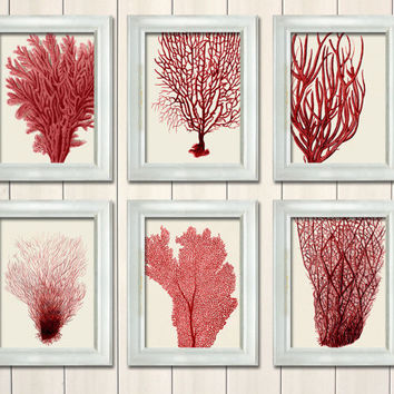 Set 6 Red Coral Prints, Nautical print sea picture beach decor wall decor marine painting picture beach house bathroom decor nautical decor