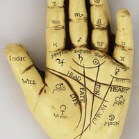 Witches Wiccan Gypsy Fortune Telling Palmistry Hand Resin Made Great For Learning to Read Palms