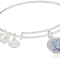 Alex and Ani Art Infusion Unexpected Miracles Expandable Rafaelian Shiny Silver Bangle Bracelet