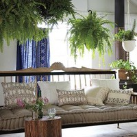 Handcarved Valpo Twin Daybed by Anthropologie in Black Size: One Size Furniture