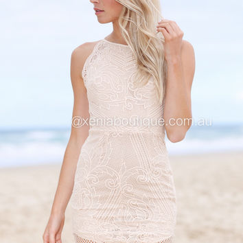 Harlem Nights Lace Dress