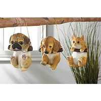 3 Swinging Animals Decor