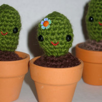 "Tiny Amigurumi Cactus in 2"" Terra Cotta Planter"