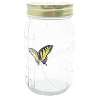 My Butterfly Collection Animated Butterfly in a Jar Yellow Swallowtail Figurine