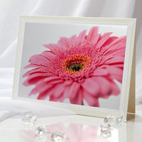 Honeysuckle pink herbera blank greeting photo note card for any occasion such as wedding, anniversary, birthday, and other,