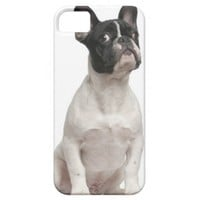 French Bulldog puppy (5 months old) Iphone 5 Cases from Zazzle.com