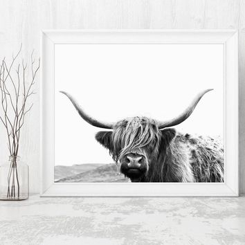 Highland Cow Canvas Art Print and Poster , Farm Animal Highland Bull Photography Canvas Painting Picture Modern Wall Art Decor
