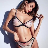 Sexy embroidered gauze sexy underwear set