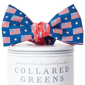 Let Freedom Ring Mixer Bow Tie