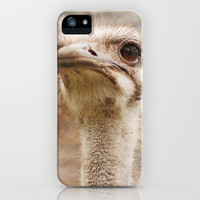 Hello Ostrich iPhone Case by Ti Amo Foto | Society6