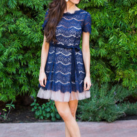 Sally Navy Lace Tulle Dress by Ark & Co