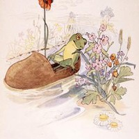 The Frog in a Shoe Fine Art Print