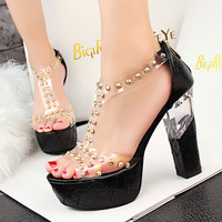 Summer Fashion  Hollow Transparent Rivet Band Zip Exposed Toe Sandals Thick Heel Platform Heels Shoes
