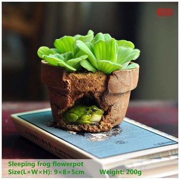Frog Outdoor Red Clay Planter Decoration