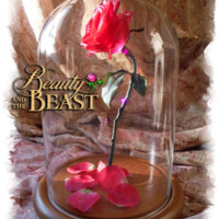 Enchanted Rose Home