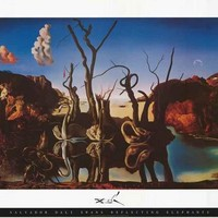 Salvador Dali Swans Reflecting Elephants Poster 24x36