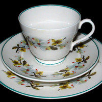 Shelley Bailey's Dogwood Cup And Saucer With Plate Windsor Teacup Trio Teal Trim