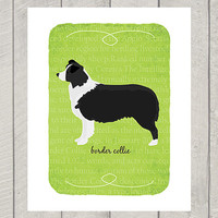 Border Collie Breed Custom Dog Art Print