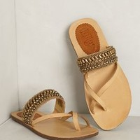 Merimbula Sandals by Latigo
