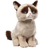 Grumpy Cat The world's grumpiest cat