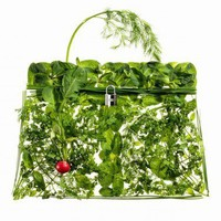 Hermes Kelly Picnic | Trendland: Fashion Blog & Trend Magazine