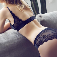 Lace Paneled Seamless Wireless Bra Sheer Classic Waist Panty Lingerie Set