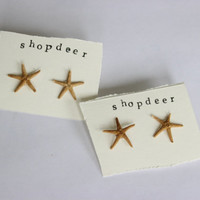 Tiny Real Starfish Stud Earrings