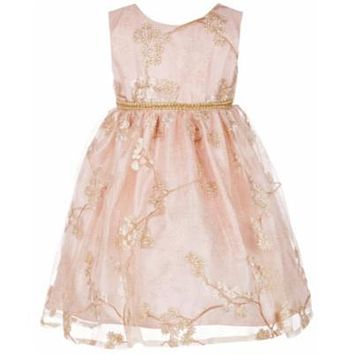 Blueberi Boulevard Baby Girls Floral Embroidered Party Dress - Pink